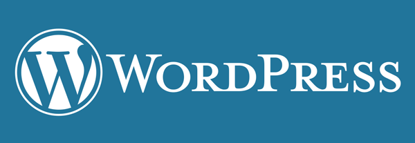 Cyber Monday Deal – Free WordPress Security Consultation @ Codeable featured image