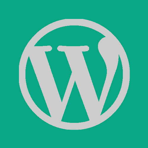 Big WordPress Problem – Slow WP Admin / Uncached Pageloads Slow featured image