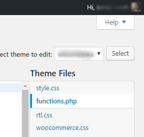 functions.php location in WordPress dashboard screenshot